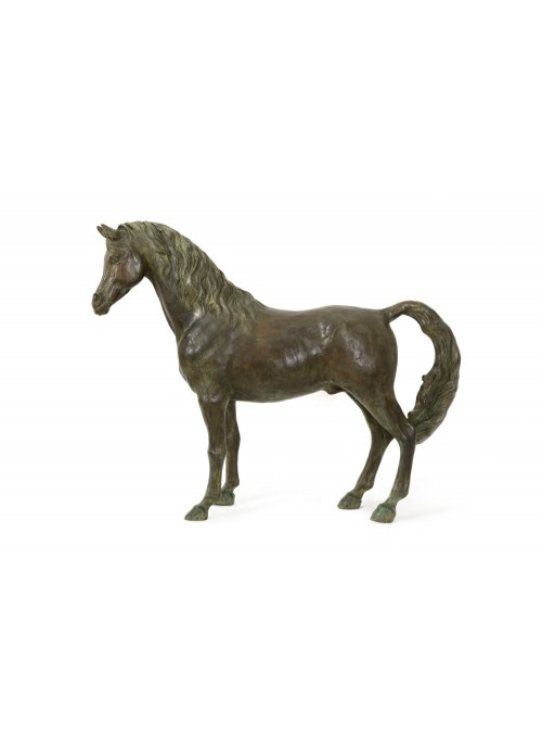 Bronze sculpture of an Arabian horse