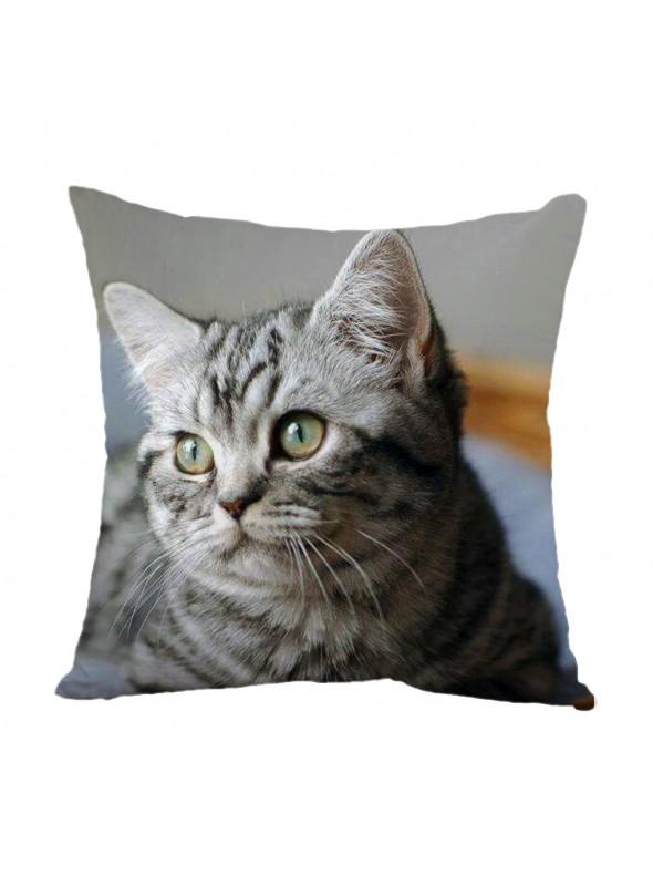Squared cusion with a cat muzzle - Gattino