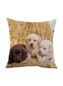 Squared cushion with a three puppy dogs - Cagnolini